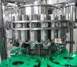 Automatische van de Fles van de Drank Van het Vruchtesap het Vullen en van de Verpakking Machine