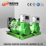 energia elettrica portatile Genset diesel di 25kVA 20kw con il motore di Weichai