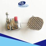 歯科矯正学の最小のRoth Mbt端の方にSystmの金属は熱い熱いかっこに入れる