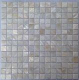 White Shell de agua dulce 20*20 en la malla Mosaico