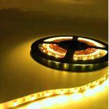 Striscia variabile di alto di Istruzione Autodidattica SMD 3528 LED di CC 24V/12V della corda dell'indicatore luminoso di RGB LED dell'indicatore luminoso colore flessibile ad alta densità LED della striscia 60 LEDs/M per la decorazione dell'interno