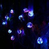 Indicatore luminoso della stringa del globo G40 con 48 lampadine libere, indicatori luminosi esterni del mercato, stringa chiara esterna del patio