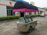 Gelato Vending Cart with Wheels / Beach Trolley Cart / Ice Cream Display Showcase Freezers (CE aprovado)