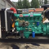 300kVA 엔진 디젤 엔진 발전기 세트
