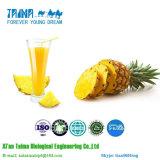 ISO одобрил порошок ананаса 100% чисто естественный органический Freeze-Dried, высокое качество Freeze-Dried порошок ананаса
