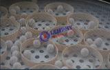 Granulados e granulados de madeira com peneira vibratória