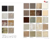 Azulejo esmaltado China anti de la porcelana de Resistantof los 60X60cm con ISO9001 (AJJL605)