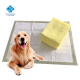 Chiot Formation interne Pad 60*60cm