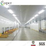 Coste del proyecto de la conservación en cámara frigorífica del precio de fábrica de China