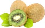 La nouvelle récolte de fruits kiwi frais de haute qualité