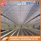 De hete Plastic Serre van de Tunnel van de Verkoop Gemakkelijke Geïnstalleerdet met het Systeem van de Opening