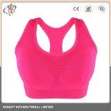 Yoga OEM Bra Gimnasio Sport ropa de damas de desgaste