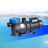 国内水プールの使用の吸引ポンプ