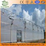 Сборные конструкции туннеля/Single-Span/Multi-Span пластиковую пленку выбросов парниковых газов в сельском хозяйстве