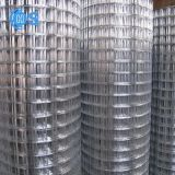 中国の工場によって電流を通される溶接されたウサギのケージの金網