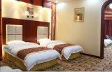 Doppia mobilia standard di lusso della camera da letto dell'hotel della stanza di ospite di ospitalità/mobilia standard della camera da letto del doppio dell'hotel impostata (CHN-002)