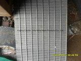 ウェッジワイヤースロットパネル/排水スクリーンのパネル