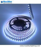 DC24V 120LEDs / M RGBW Rgbww 4 canaux LED Strip Light