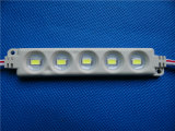 Módulo inyectado 5LEDs de la alta calidad 5730 LED