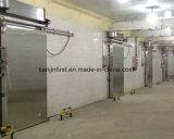 Matériau de construction de chambre froide de constructeurs de chambre froide