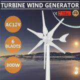 générateur de vent piloté par jacinthe verte de turbine d'option de volt de moulin à vent de 300W AC12V