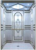 Лифт резиденции домашний с приводом AC Vvvf беззубчатым (RLS-247)