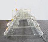 Poul Tech Full Automatic een Apparatuur van de Kooi van de Kip van de Laag van het Frame van het Type