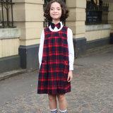 Un pezzo solo del vestito dal plaid dell'uniforme scolastico