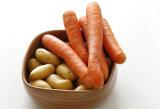 Тип моющее машинаа щетки картошки Peeler моркови овоща плодоовощ