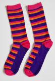 La conception de bonne qualité personnalisé Rainbow femmes chaussettes de coton Happy Socks