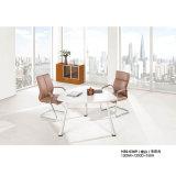 Büro-Möbel-Konferenzzimmer-Konferenztisch