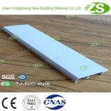 Pavimento di alluminio della scheda di prezzi competitivi che fiancheggia Plinth