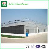 Invernadero de la agricultura e invernadero del jardín para el vehículo