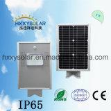 2017 qualité de vente chaude 8W tout dans un réverbère solaire Integrated de DEL