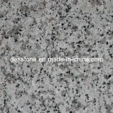 Granito gris chino G439 para el azulejo de suelo