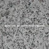 Gris granito chino G439 baldosa para pisos