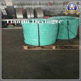 Bobine S32101 S32304 de bande d'acier inoxydable de Duplex-Acier