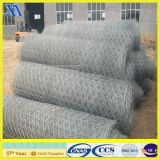 Ячеистая сеть 2*50m PVC Coated Gabion