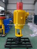 Vis de la pompe de PC de pétrole de la surface de la pompe de dispositif de conduite directe 22kw