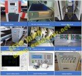 Heißer Verkauf der Ipg Faser-Laser-Schnitt-Maschinerie für Rohr-Blatt-Ausschnitt