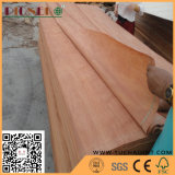 0.3mm AA of degrees of Natural Plb Wood Veneer for India Market
