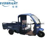 Triciclo Três Wheeler/Triciclo de carga com cabina fechada