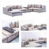 Insieme registrabile della mobilia del salone dei poggiacapi di Loveseat del sofà grigio sezionale del sofà