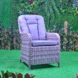 Flaches Weidenhaupthotel-Aluminiumbüro Aluminiumim freienPario, das Stuhl (GT4, speist)