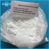 Gesundes DecaDurabolin Nandrolone Decanoate Puder für Muskel-Wachstum