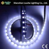 Luz de tira do diodo emissor de luz da fileira 5050 120LEDs/M do brilho super única