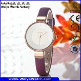 Reloj del asunto de la aleación de las señoras clásicas del reloj (Wy-092C)