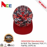 Tela 2017 do costume com o chapéu do Snapback do logotipo 6panel do bordado 3D