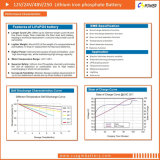 3years батарея лития длинной жизни LiFePO4 гарантированности 12V100ah (VRLA)