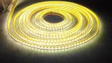 Alto indicatore luminoso ad alta tensione della corda di luminosità LED con approvazione del Ce